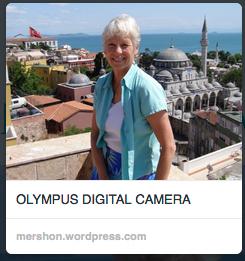 Ann Marie over Istanbul, no metadata, annmariemershon.com, amershon.edublogs.org