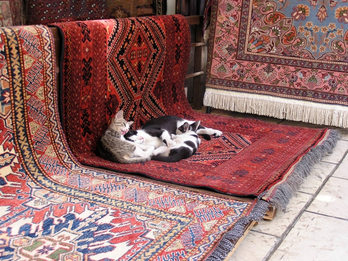 The man who gives away carpets? A Writer's Angst